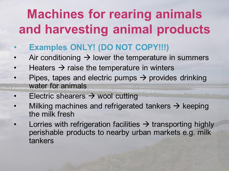 Machines for rearing animals and harvesting animal products