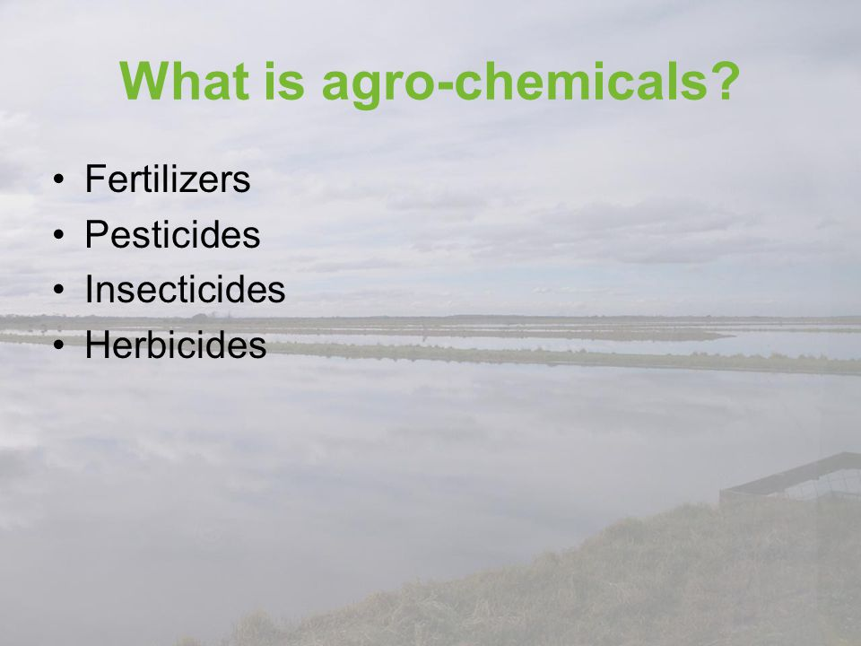 What is agro-chemicals