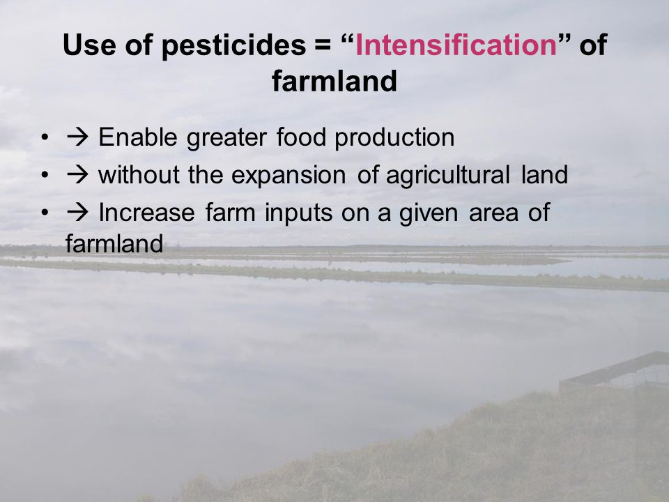 Use of pesticides = Intensification of farmland