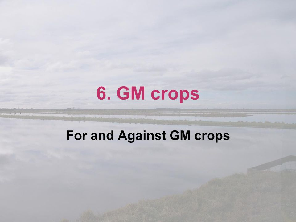 For and Against GM crops