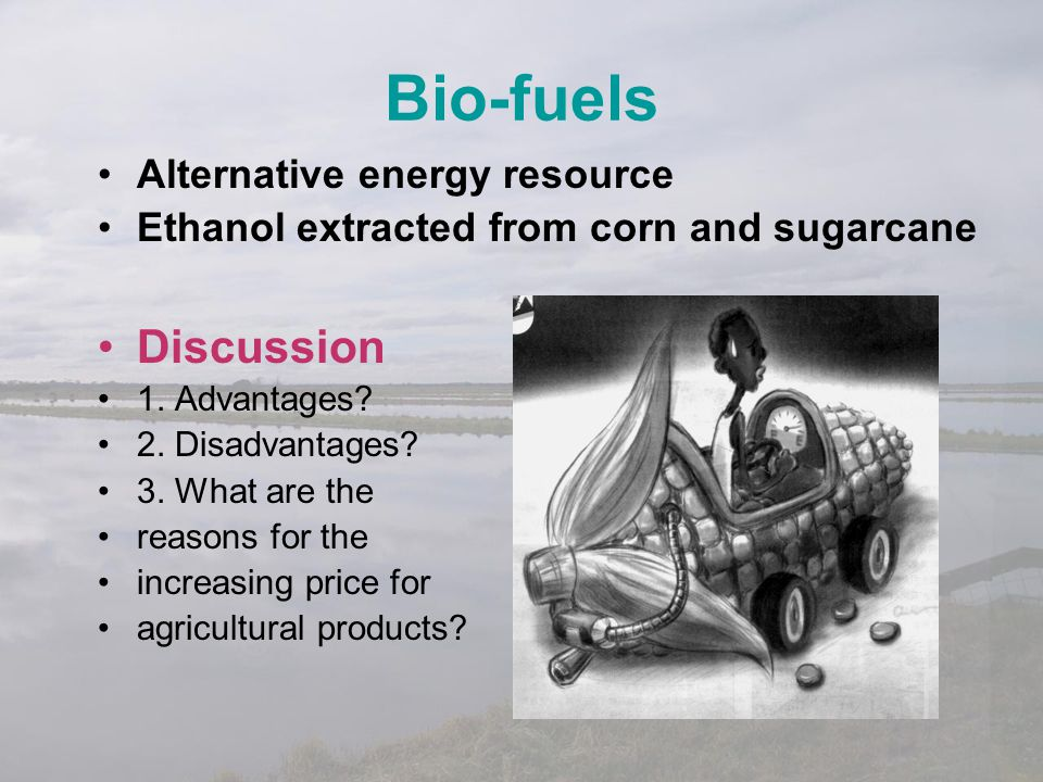 Bio-fuels Discussion Alternative energy resource