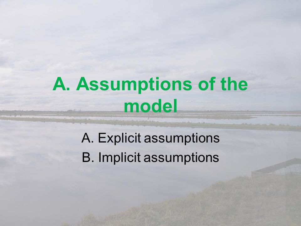 A. Assumptions of the model
