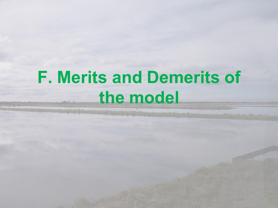 F. Merits and Demerits of the model