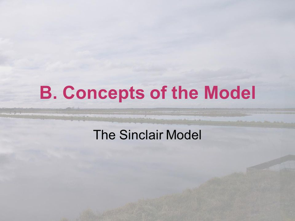 B. Concepts of the Model The Sinclair Model