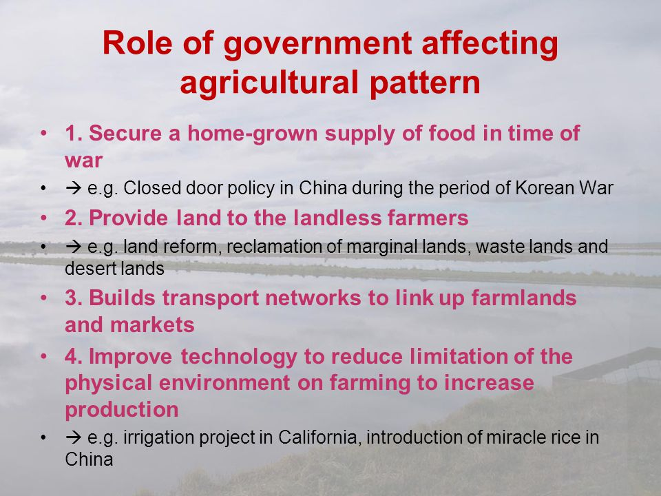 Role of government affecting agricultural pattern