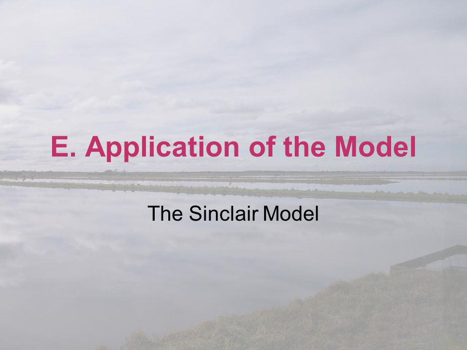 E. Application of the Model