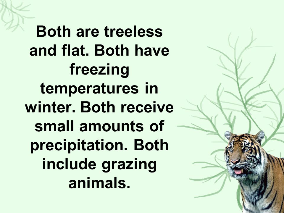 Both are treeless and flat. Both have freezing temperatures in winter
