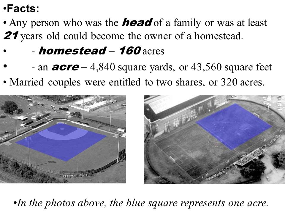 In the photos above, the blue square represents one acre.