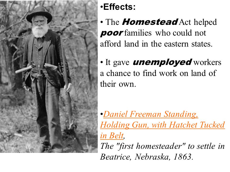 Effects: The Homestead Act helped poor families who could not afford land in the eastern states.