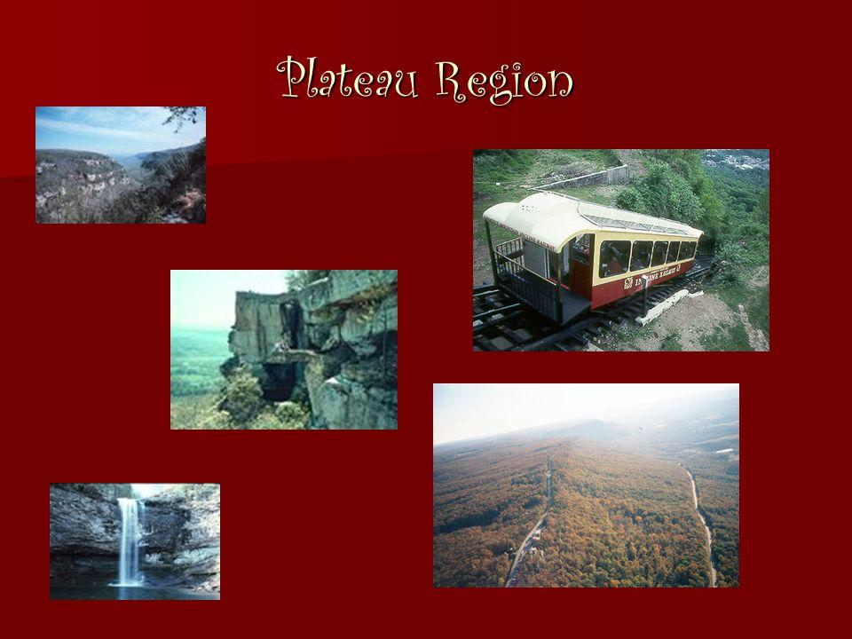 Plateau Region