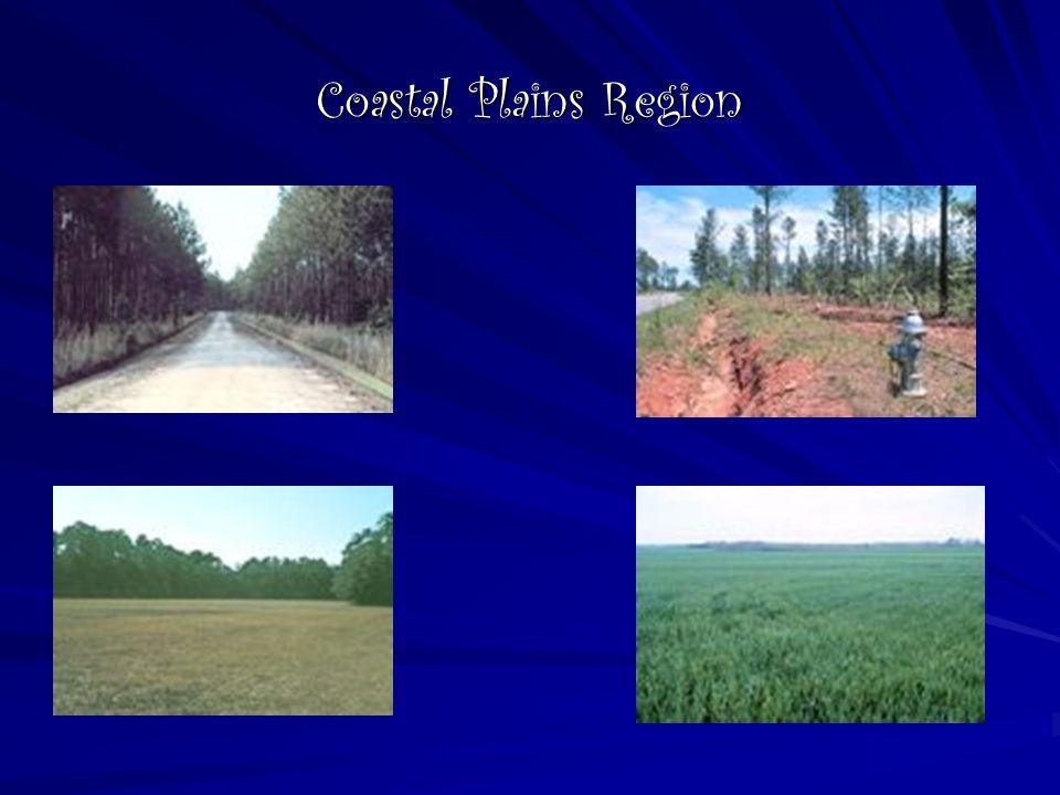 Coastal Plains Region