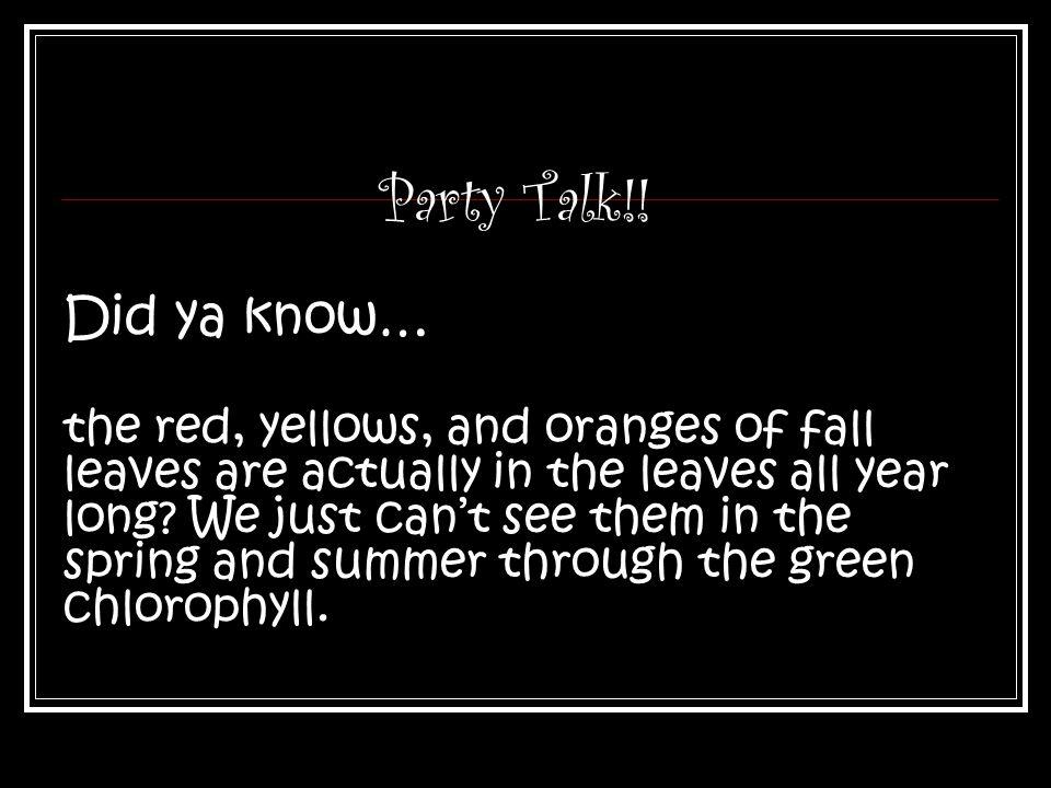 Party Talk!.