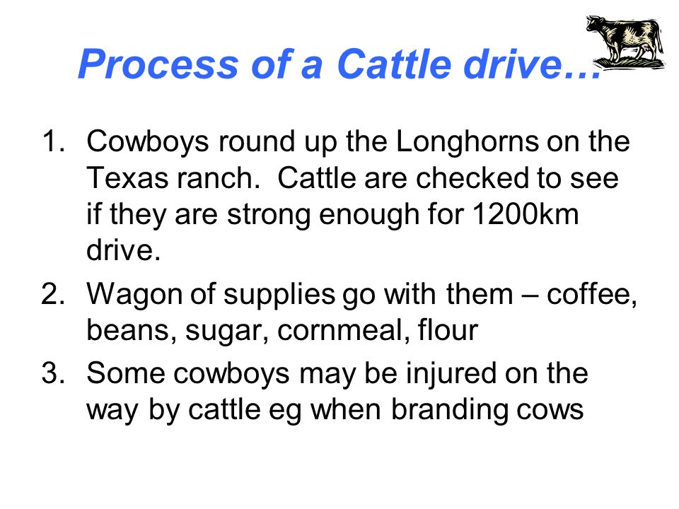 Process of a Cattle drive…
