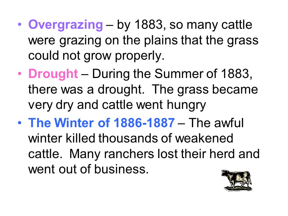 Overgrazing – by 1883, so many cattle were grazing on the plains that the grass could not grow properly.