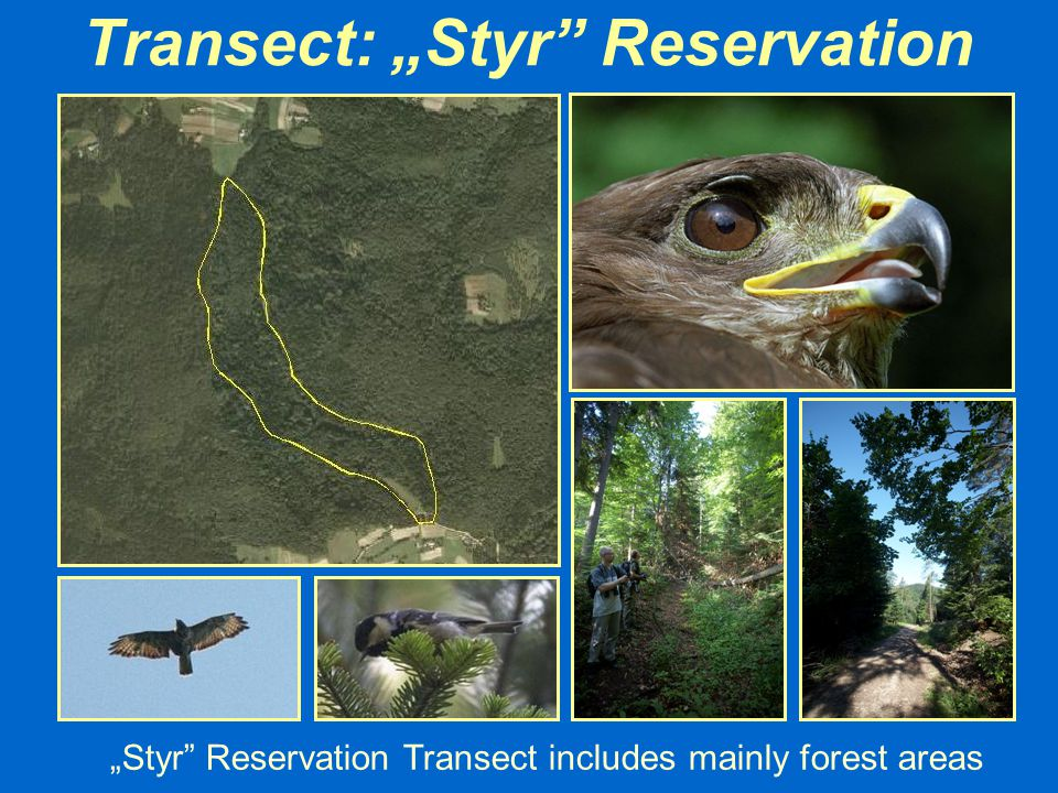 "Transect: ""Styr Reservation"