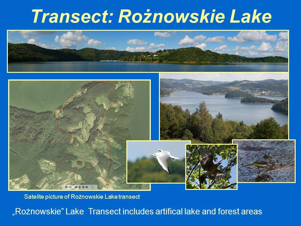 Transect: Rożnowskie Lake