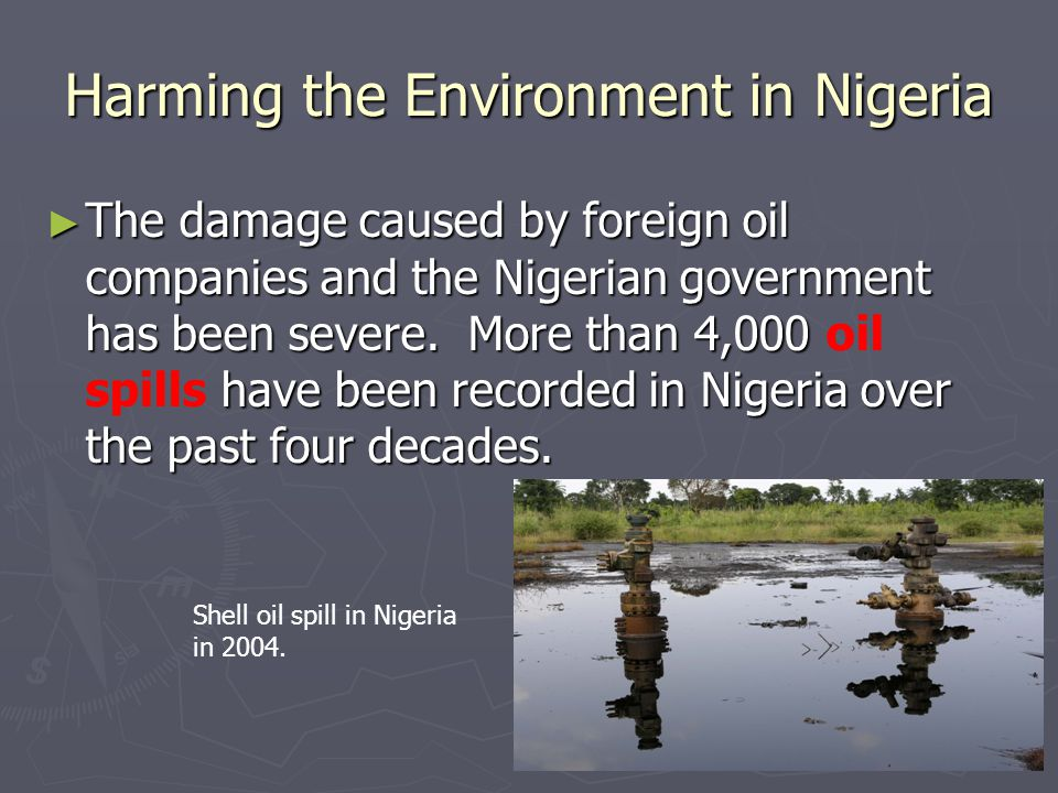Harming the Environment in Nigeria