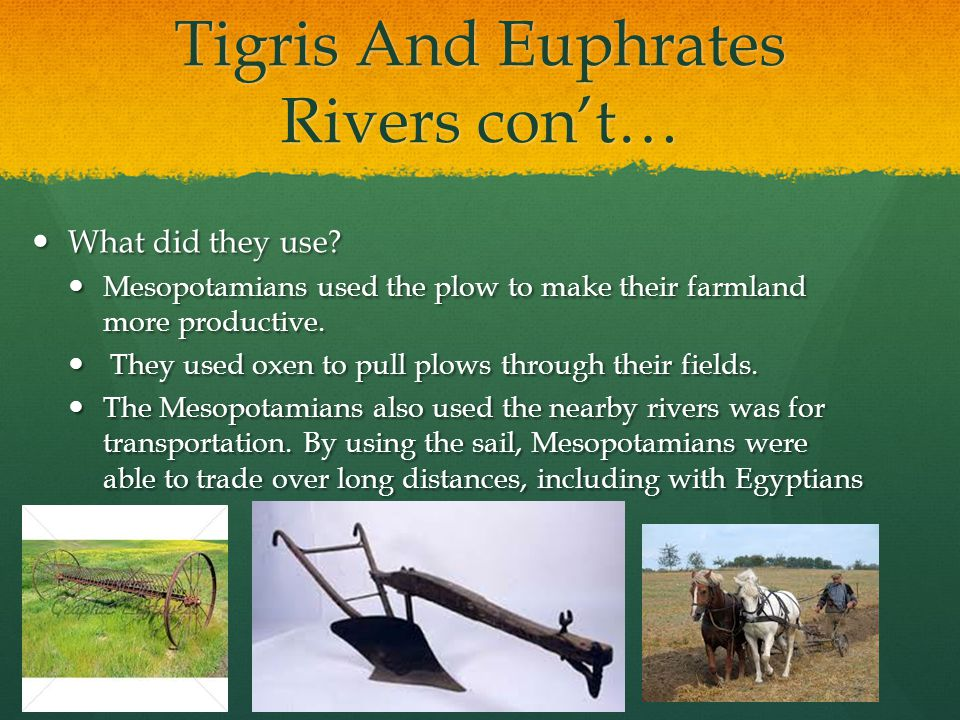 Tigris And Euphrates Rivers con't…