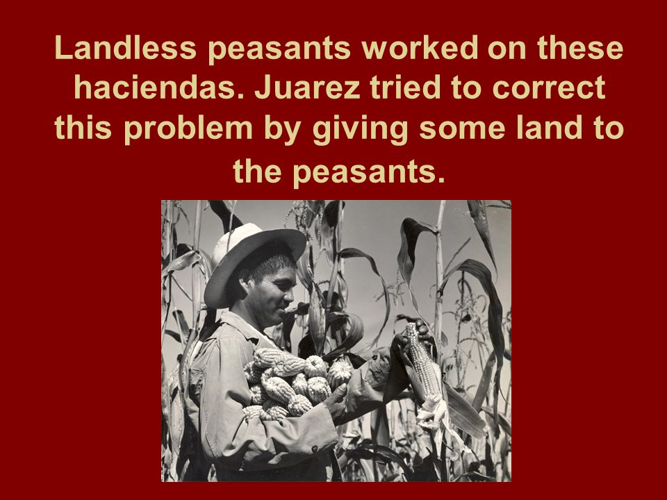 Landless peasants worked on these haciendas