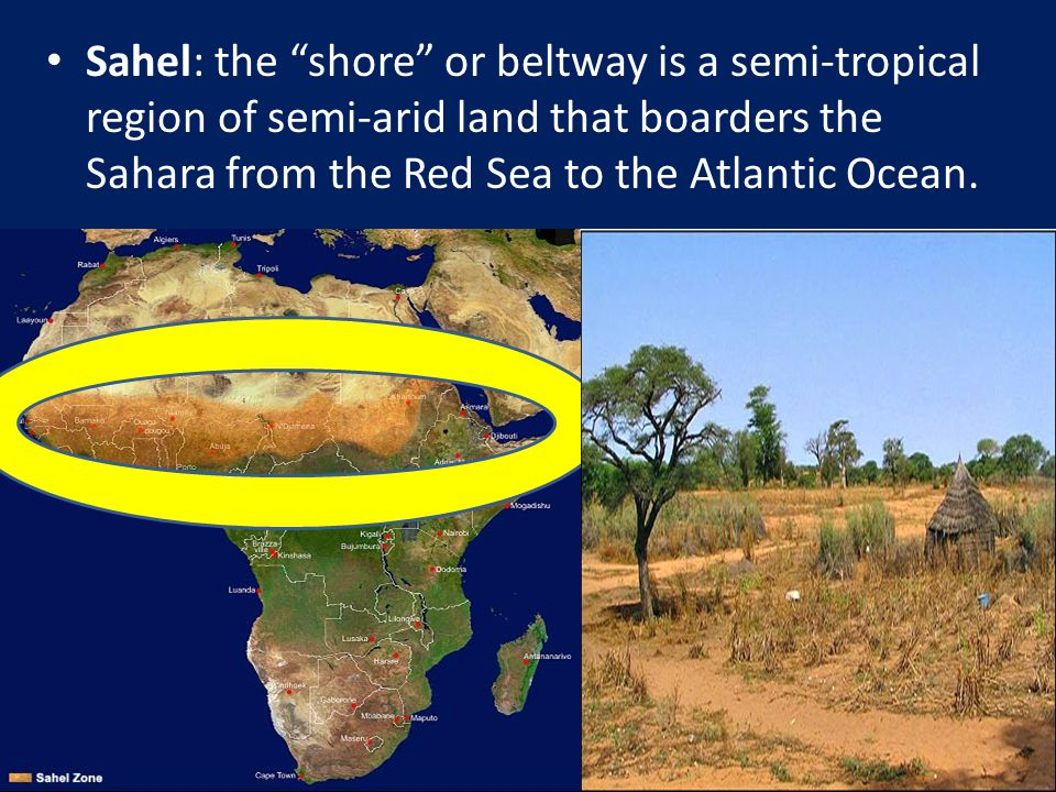 Sahel: the shore or beltway is a semi-tropical region of semi-arid land that boarders the Sahara from the Red Sea to the Atlantic Ocean.