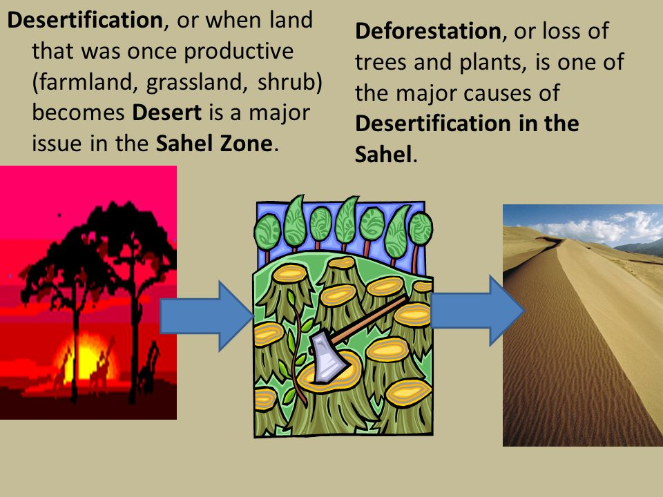 Desertification, or when land that was once productive (farmland, grassland, shrub) becomes Desert is a major issue in the Sahel Zone.