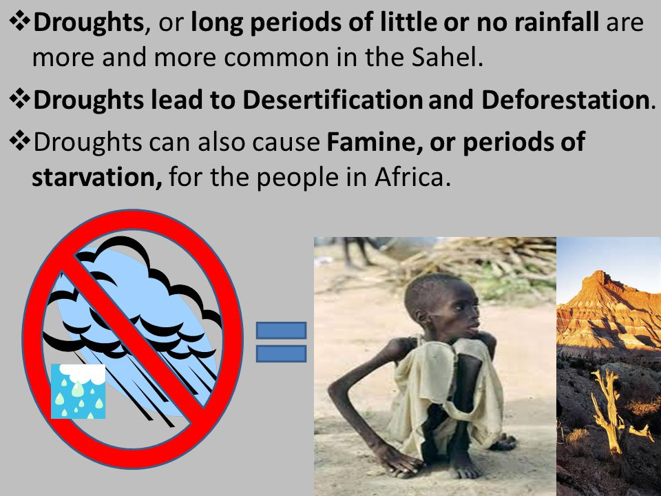 Droughts, or long periods of little or no rainfall are more and more common in the Sahel.