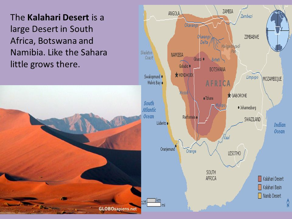 a geographical overview of kalahari desert Build a meerkat what adaptations skills summary this activity targets the following skills: 21st century student outcomes kalahari desert physical.