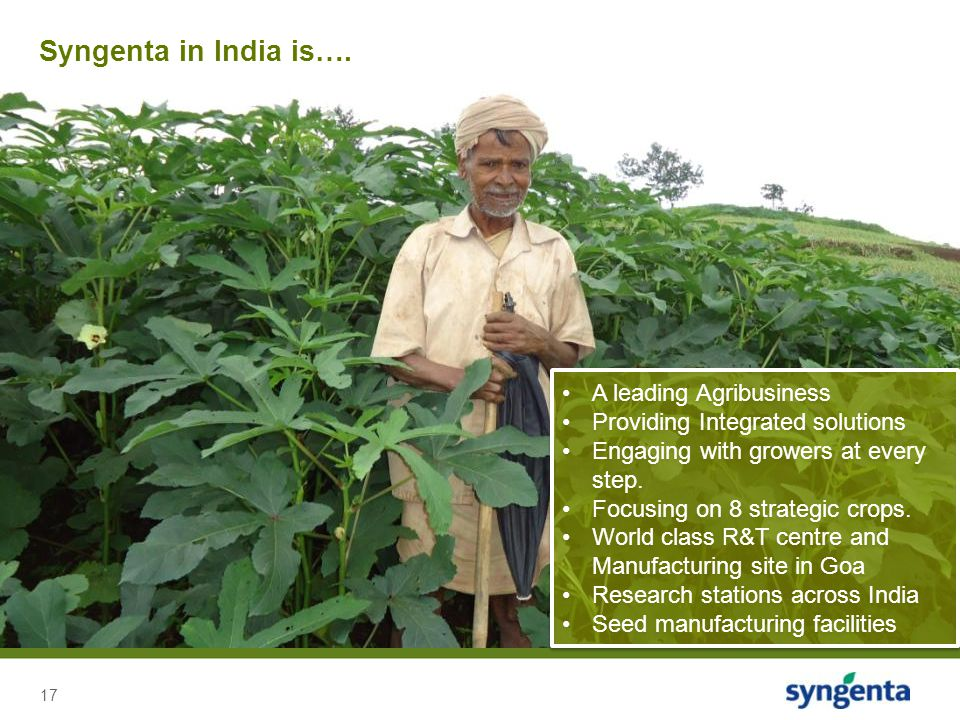 Syngenta in India is…. A leading Agribusiness