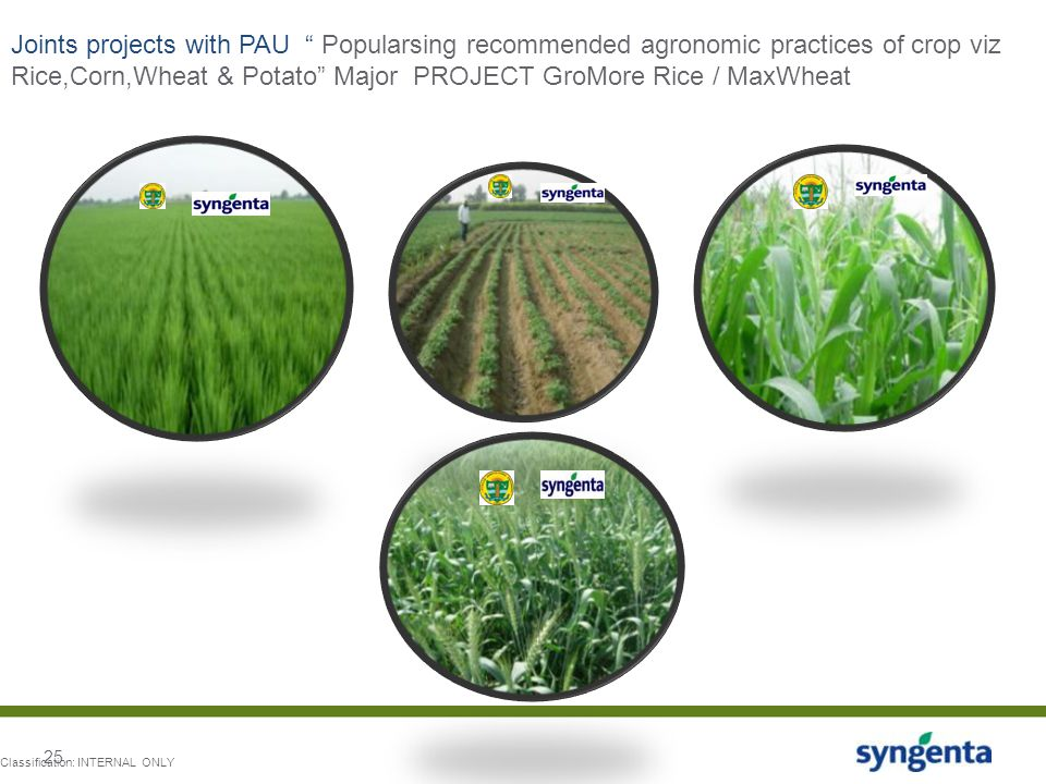 Joints projects with PAU Popularsing recommended agronomic practices of crop viz Rice,Corn,Wheat & Potato Major PROJECT GroMore Rice / MaxWheat