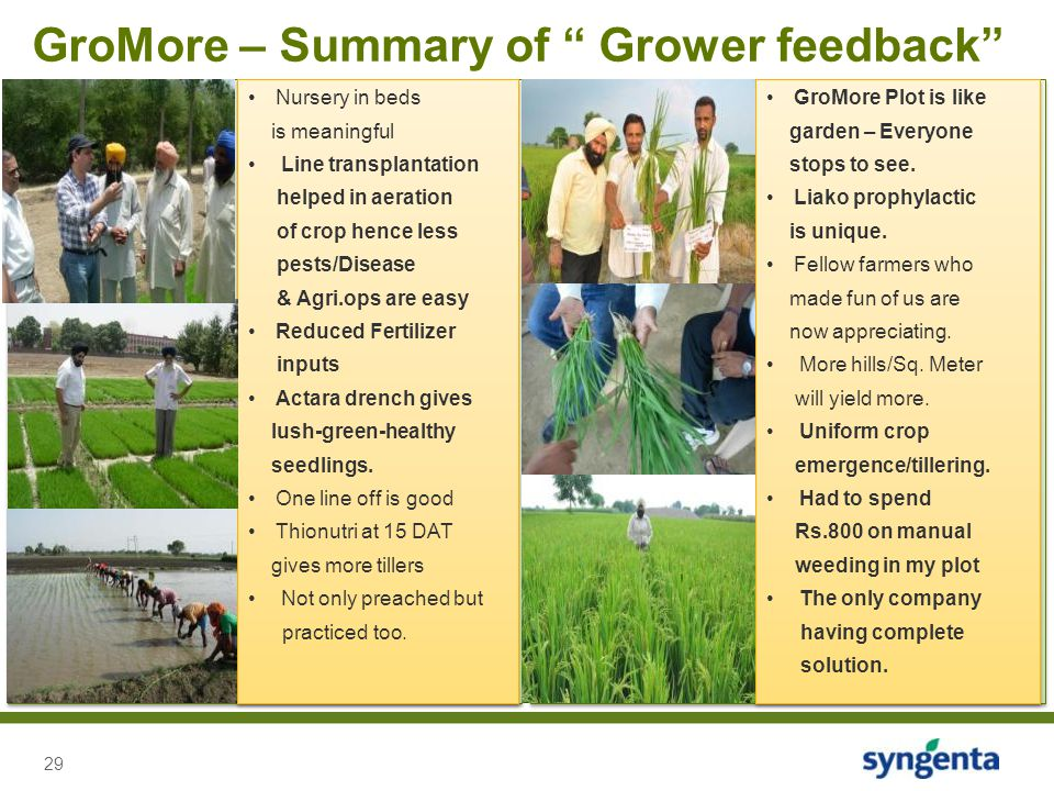 GroMore – Summary of Grower feedback