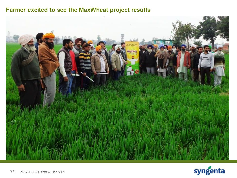 Farmer excited to see the MaxWheat project results