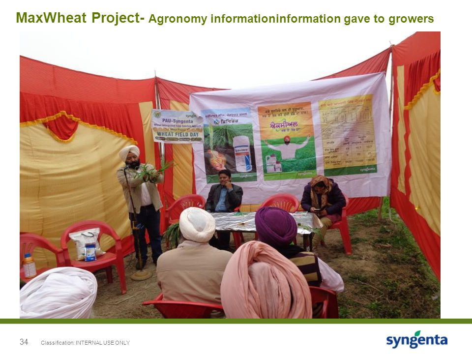 MaxWheat Project- Agronomy informationinformation gave to growers