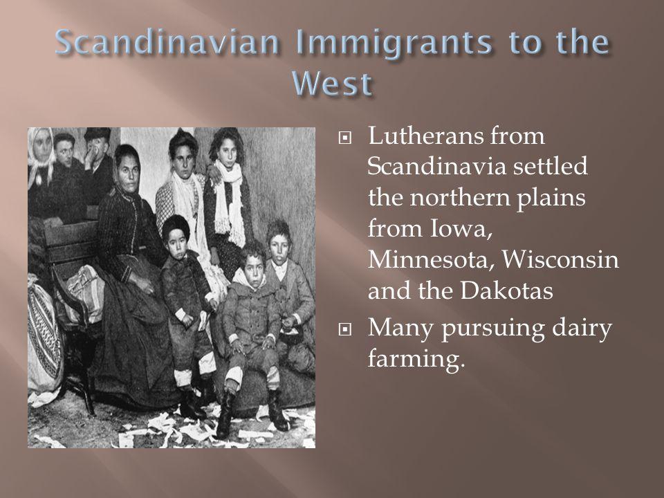 Scandinavian Immigrants to the West