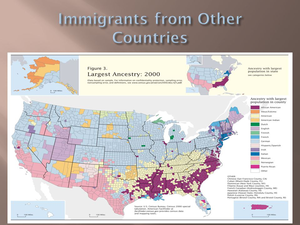 Immigrants from Other Countries