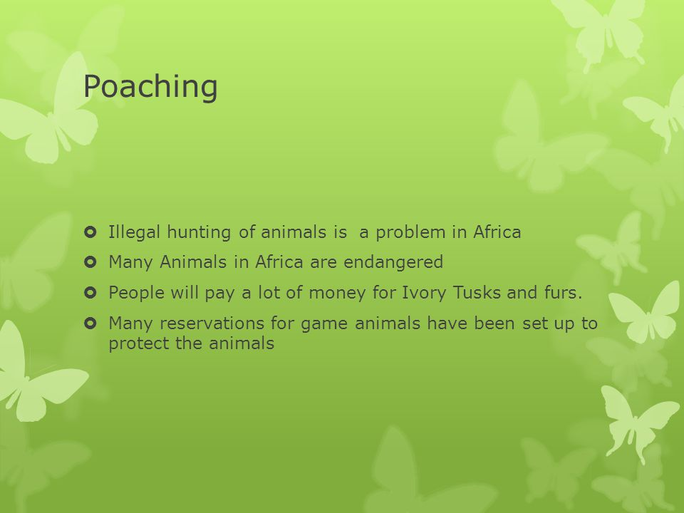 Poaching Illegal hunting of animals is a problem in Africa
