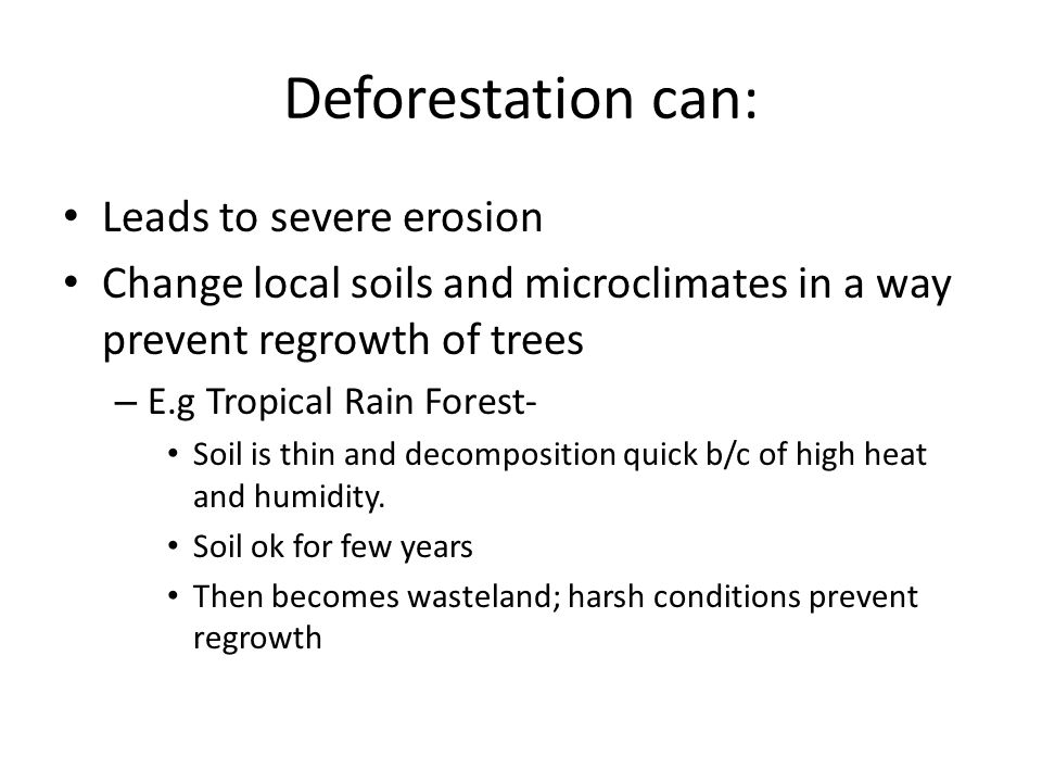 Deforestation can: Leads to severe erosion