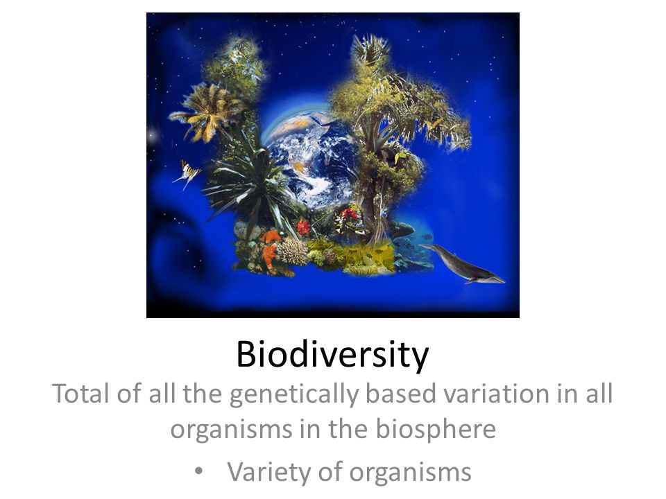 Biodiversity Total of all the genetically based variation in all organisms in the biosphere.