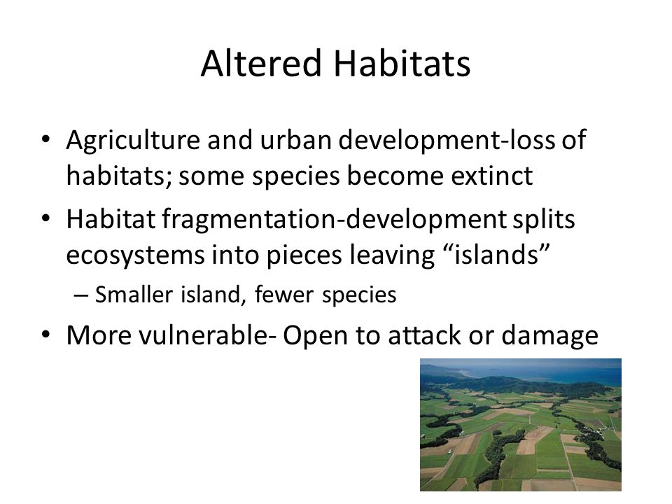 Altered Habitats Agriculture and urban development-loss of habitats; some species become extinct.