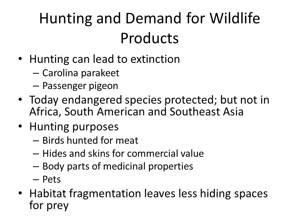 Hunting and Demand for Wildlife Products