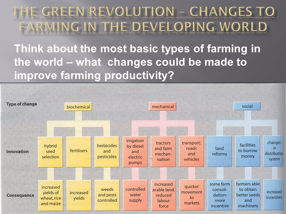 The Green Revolution – changes to farming in the Developing world
