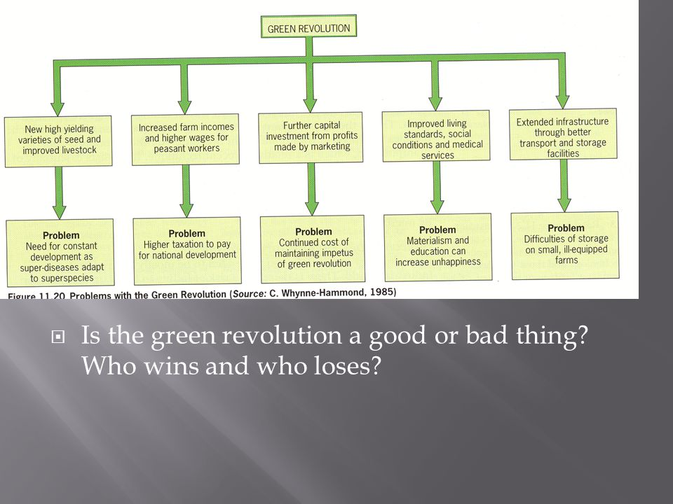Is the green revolution a good or bad thing Who wins and who loses