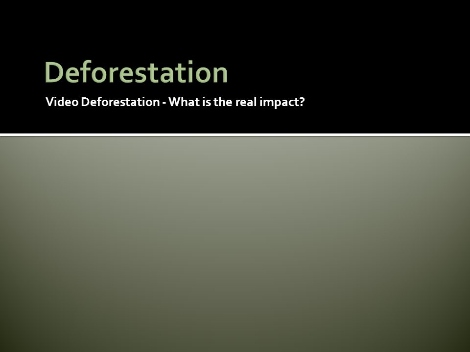 Deforestation Video Deforestation - What is the real impact