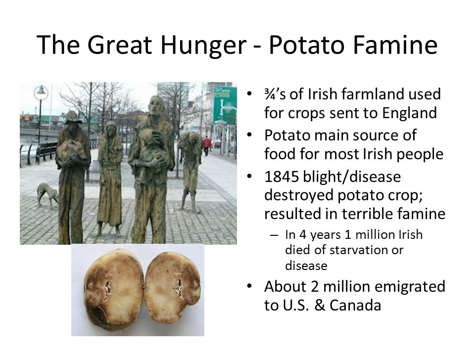 The Great Hunger - Potato Famine