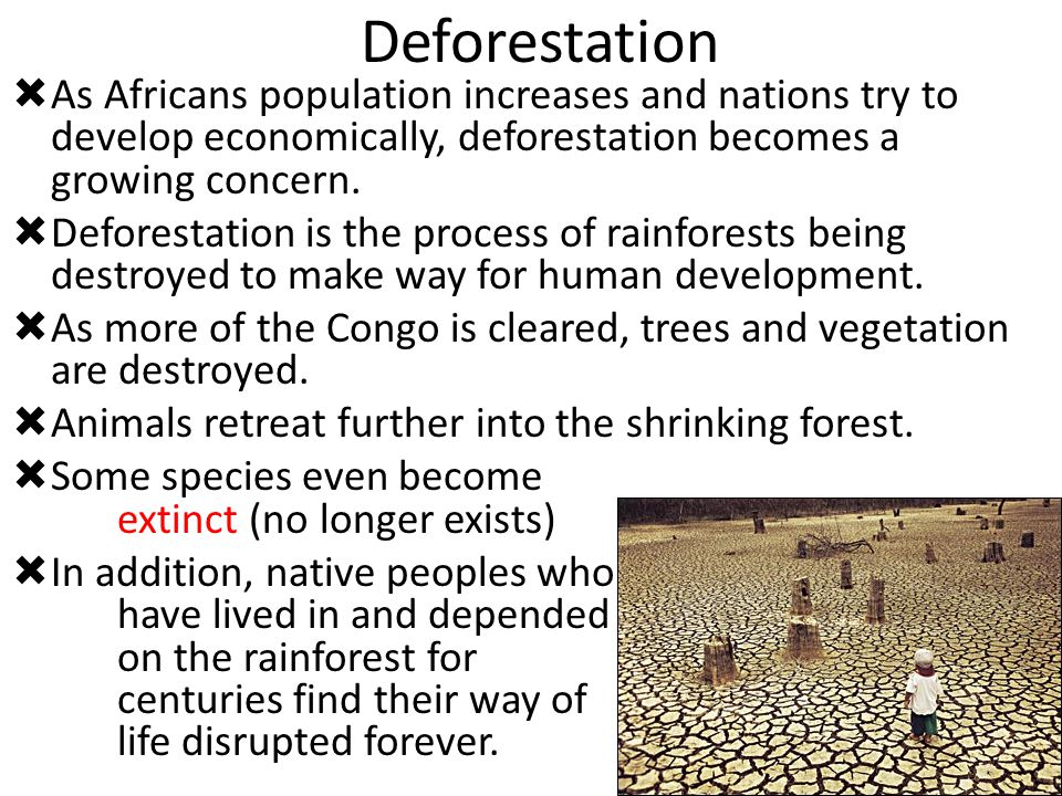 Deforestation As Africans population increases and nations try to develop economically, deforestation becomes a growing concern.