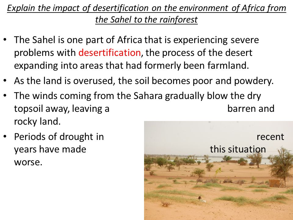 As the land is overused, the soil becomes poor and powdery.