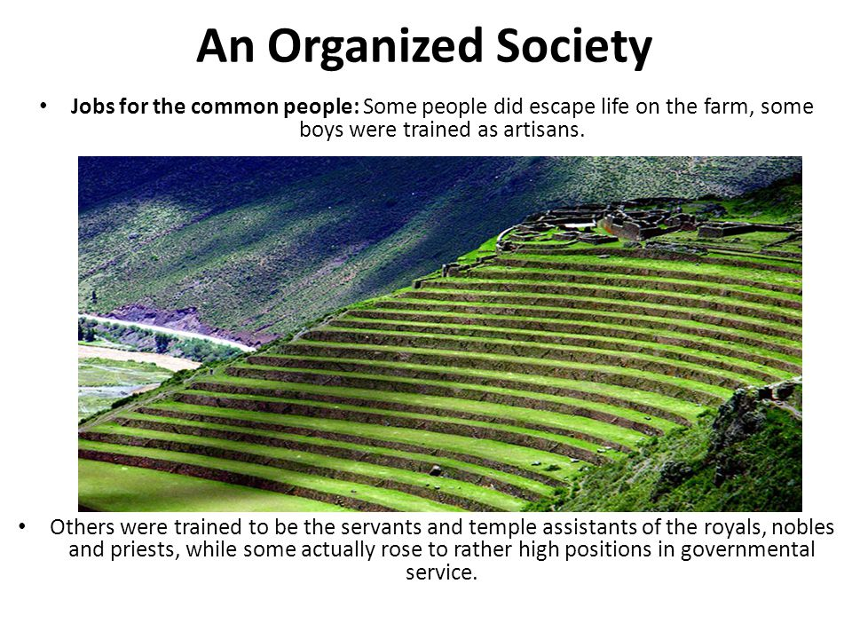 An Organized Society Jobs for the common people: Some people did escape life on the farm, some boys were trained as artisans.