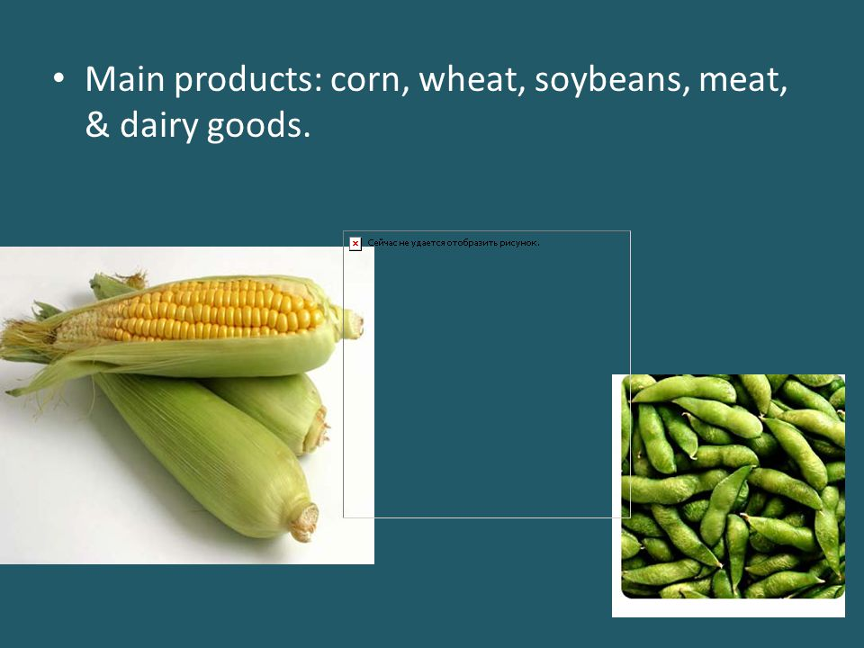 Main products: corn, wheat, soybeans, meat, & dairy goods.
