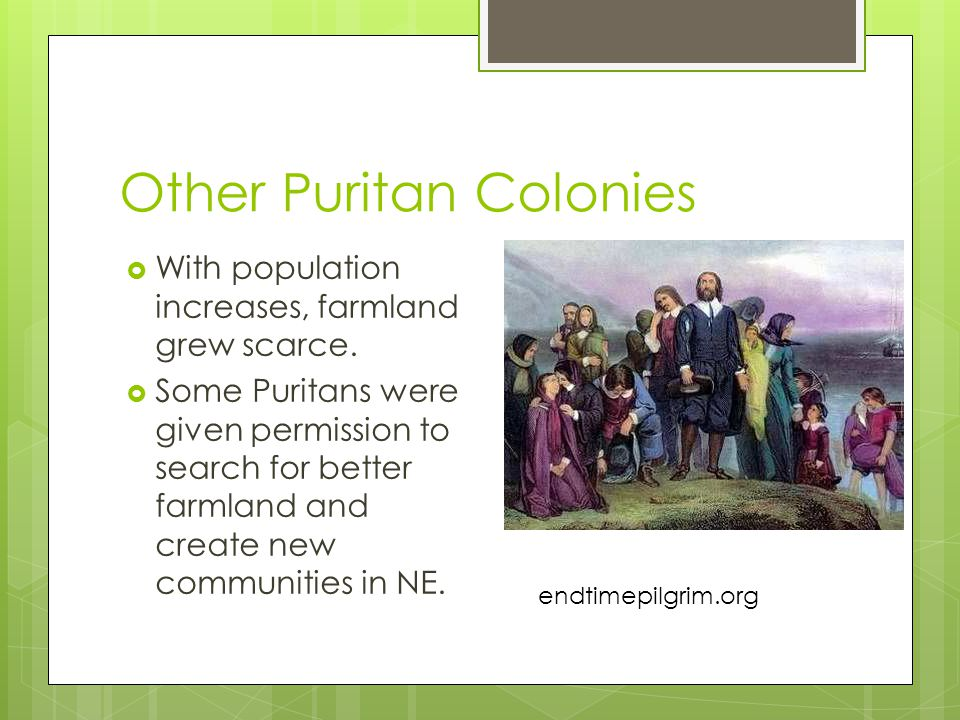 Other Puritan Colonies