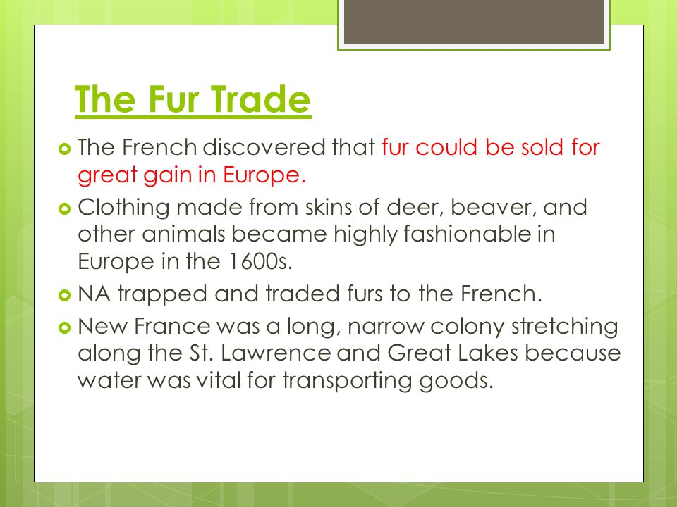 The Fur Trade The French discovered that fur could be sold for great gain in Europe.