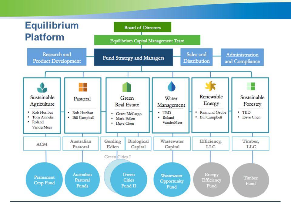 Equilibrium Platform